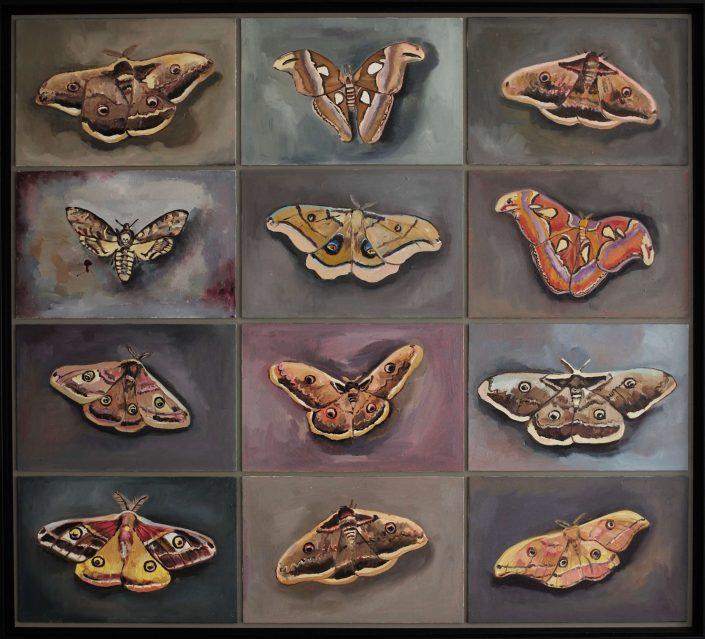 12 Butterflies 2020. oil on wood 88 x 97 cm